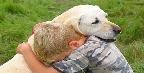 Köpekler niyetini insanın gözünden anlıyor