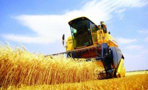 Türkiye ile Hollanda Tarımda İş Birliğiyle Ciddi Netice Alabilir