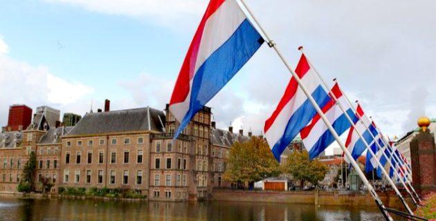 Hollanda'da Ulusal Lale Günü'ne Yoğun İlgi