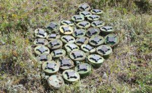 Hollanda'da bir tarlada 200 mayın bulundu