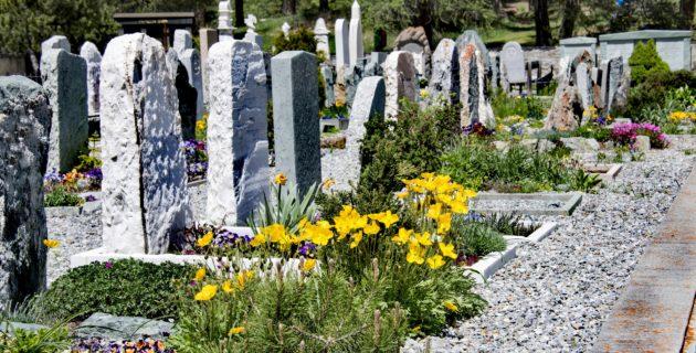 Rotterdam'a Müslüman Mezarlık İçin Adım Atıldı