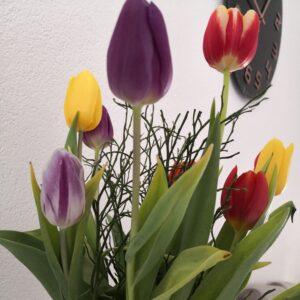 Baharın müjdecisi 'cemre'