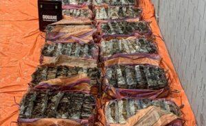 Hollanda'nın Rotterdam Limanında 1400 kilogram kokain ele geçirildi